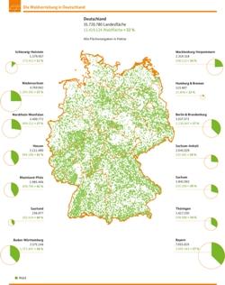 Bundeswaldinventur3 Waldverteilung klein