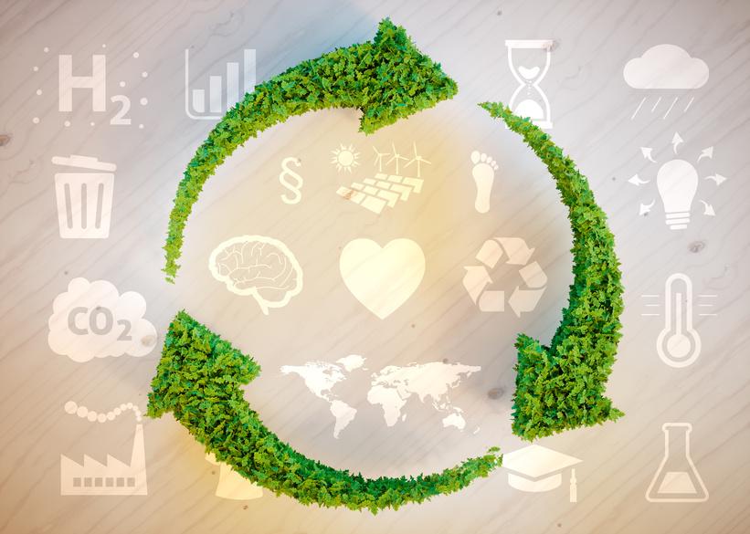 Holzfeuerungen emissionsärmer als lange gedacht