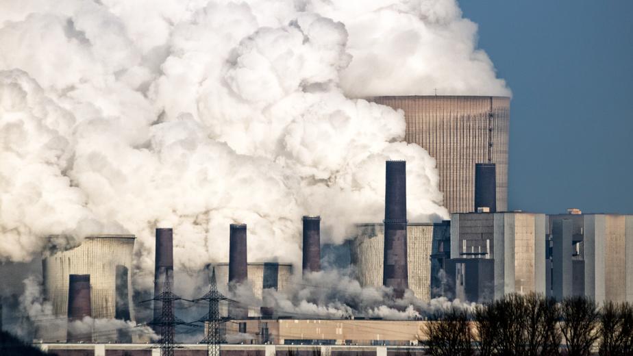 Grenzwerte der TA Luft vom Fachverband Holzenergie kritisiert