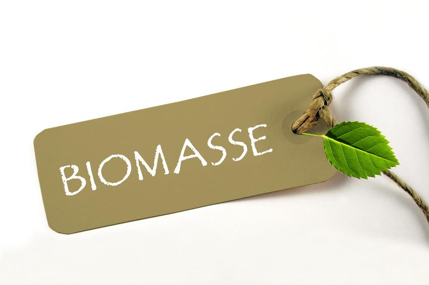Gute Erfolgschancen für Biomasseheizungen