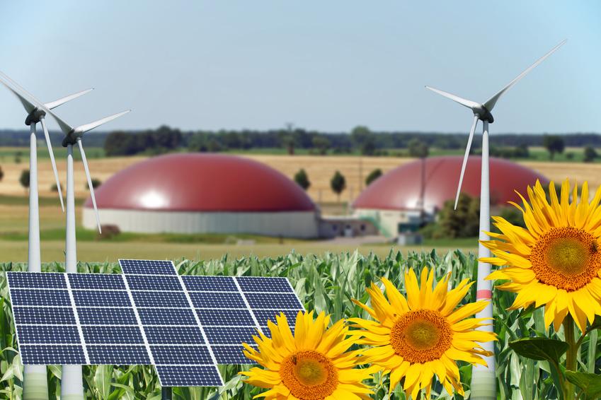 Bundesverband Bioenergie schlägt CO2-Bepreisung vor
