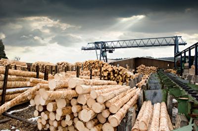 Rekord bei der Pelletsproduktion in Deutschland