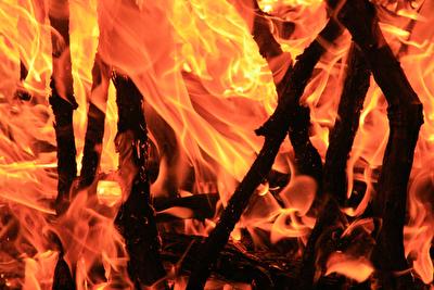 Pflege und Wartung der Feuerstätte
